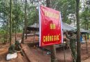 Doanh trại giữa rừng xanh